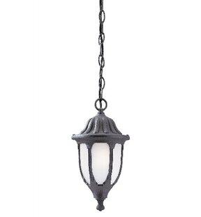 Westinghouse Lighting 1-Light Outdoor Hanging Lantern