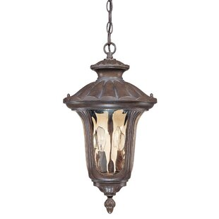 Nuvo Lighting Beaumont 2-Light Outdoor Hanging Lantern