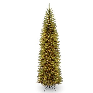 kingswood pencil 9 green fir artificial christmas tree with 500 clear lights with stand - National Christmas Tree Company