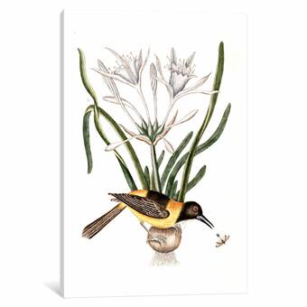 Wasp photo Wasp print Lily print Flower Decor Fine Art photo -Nature Print Yellow print Flower Print Nature Photo Home Decor