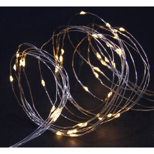 Dighton Copper Wire Multi Function Fairy Lights By The Seasonal Aisle