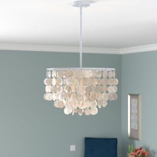 Mistana Hetton 1-Light Novelty Pendant