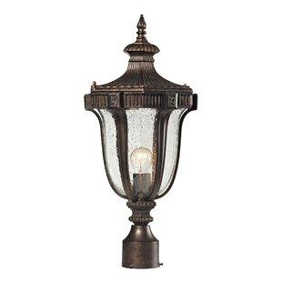 Alpert 1-Light Lantern Head by Astoria Grand