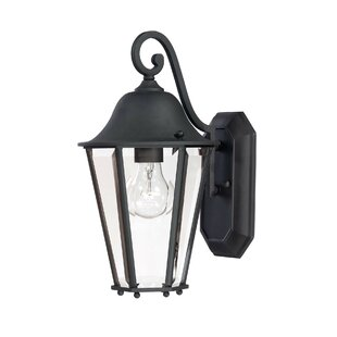Best Raritan 1-Light Outdoor Wall Lantern By Charlton Home