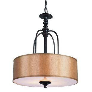TransGlobe Lighting Modern Meets Traditional 3-Light Pendant