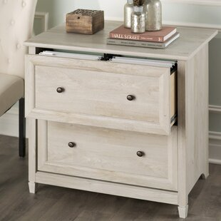 Lemire 2 Drawer Filing Cabinet