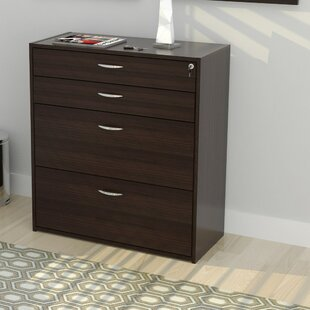 Latitude Run Bercut 4 Drawer Storage & Filing Cabinet