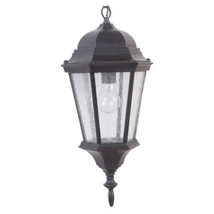 Darby Home Co Lorie 1-Light Lantern Pendant