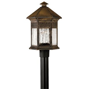 Online Reviews Westwinds Outdoor 3-Light Lantern Head By Hinkley Lighting