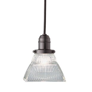 Darby Home Co Birchover 1-Light Novelty Pendant