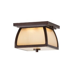 Darby Home Co Bridgwater 2-Light LED Outdoor Flush Mount