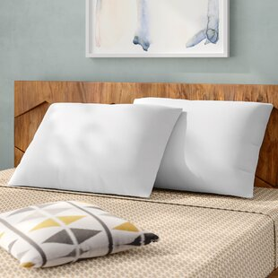 Premium Down and Feathers Pillow (Set of 2)