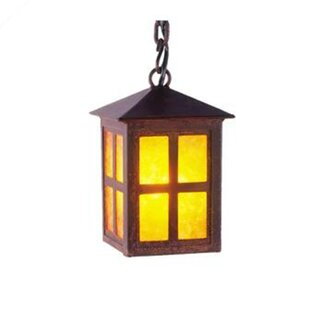 Looking for Old Faithful 1-Light Outdoor Hanging Lantern By Steel Partners