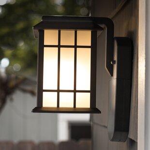 Darby Home Co Churchman Outdoor Wall Lantern