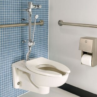 American Standard Afwall Millennium Flowise Dual Flush Elongated One-Piece Toilet