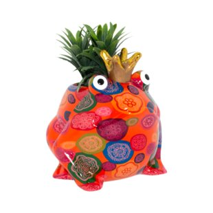 Blooming Freddy Plant Pot Image