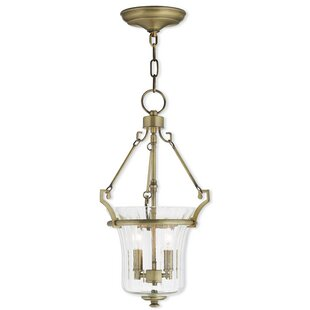 Darby Home Co Bolindale 2-Light Urn Pendant