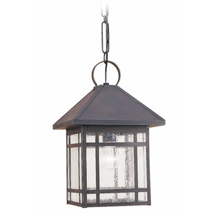 Compare Noble 1-Light Outdoor Hanging Lantern By Bloomsbury Market