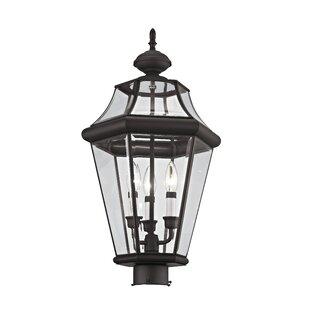 Creason Outdoor 3-Light Lantern Head by Darby Home Co