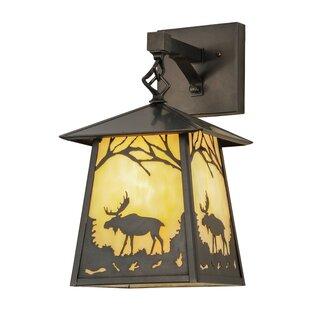 Looking for Greenbriar Oak 1-Light Outdoor Wall Lantern By Meyda Tiffany