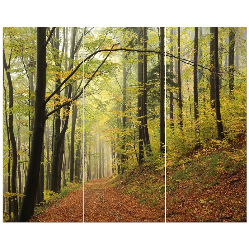 East Urban Home Forest Trail In The Fog Photographic Print Multi Piece Image On Wrapped Canvas Wayfair