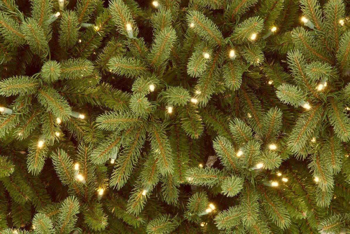 National Tree Co. Jersey Fraser Fir 7.5\' Green Artificial Christmas ...