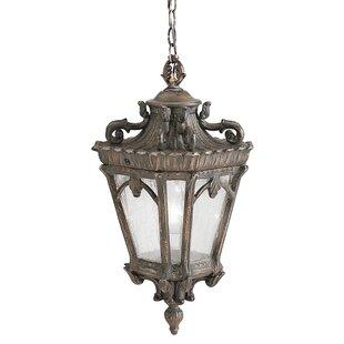 Ballintoy 1 Light Hanging Lantern Image