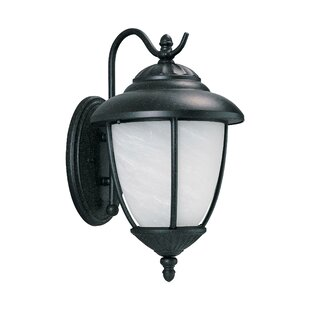 Read Reviews Nicollet 1-Light Outdoor Wall Lantern By Bloomsbury Market