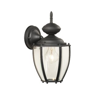 Charlton Home Breeding 1-Light Outdoor Wall Lantern