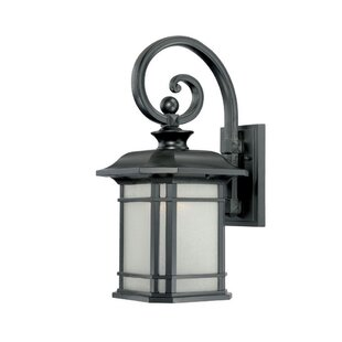 Broadmoor 1-Light Outdoor Wall Lantern
