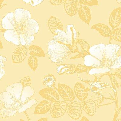 "Burkhead 32.7' x 20.5"" Chantilly Wallpaper Ophelia & Co. Color: Yellow"