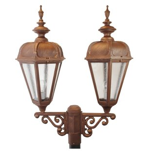 Affordable Flemingdon 2-Light Lantern Head By Darby Home Co