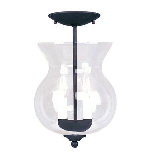 Darby Home Co Eberhart 2-Light Urn Pendant