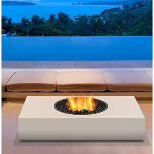 EcoSmart Fire Martini Freestanding Stainl..