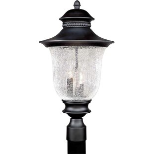 Reviews Rockmill Cast Aluminum 3-Light Lantern Head By Three Posts