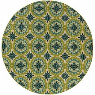 Brendel Green/Ivory Indoor/Outdoor Area Rug by Andover Mills