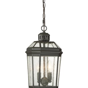 Krithika 2-Light Outdoor Hanging Lantern by Gracie Oaks Design