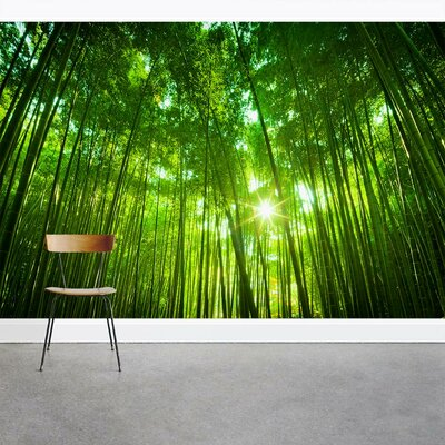 Wallums Wall Decor Leafy Bamboo Forest 8 x 144 3 Piece Wall Mural