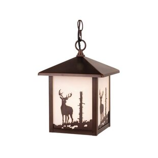 Compare & Buy Josefina 1-Light Glass Shaded Outdoor Pendant By Loon Peak