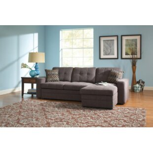 Sunset Park Sleeper Sectional by Latitude Run Best Design