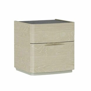 Hecht Wooden 2 Drawer Nightstand by Orren Ellis