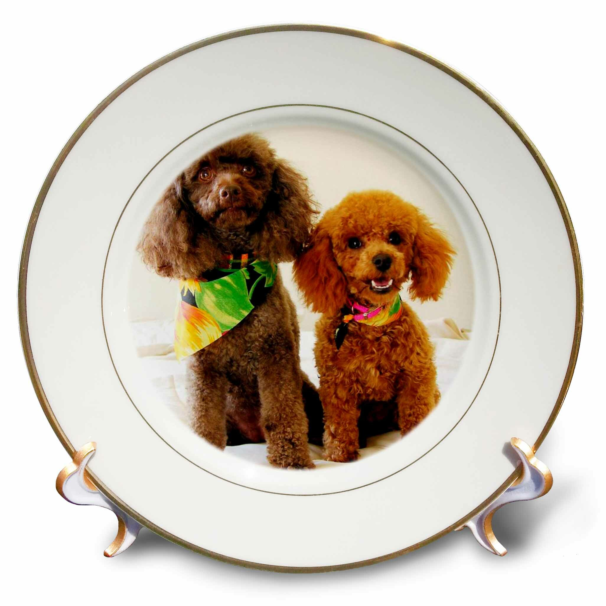 East Urban Home Poodle Puppies Porcelain Decorative Plate Wayfair