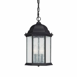 Order Hearne 3-Light Outdoor Hanging Lantern By Darby Home Co
