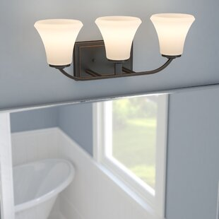 Find for Olsson 3-Light Vanity Light By Andover Mills