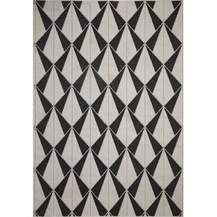 Tammy Black/Ivory Indoor/Outdoor Area Rug