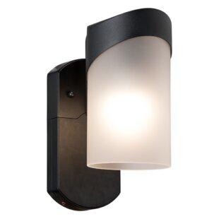Brayden Studio Carlin Contemporary 1-Light Outdoor Wall Lantern