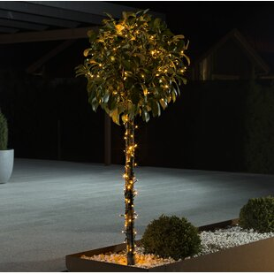 Firefly Effect 120-Light LED Fairy Lights Image