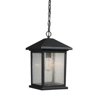 17 Stories Leroy 1-Light Outdoor Hanging Lantern