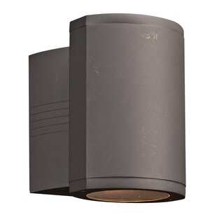 Latitude Run Neilsen 1-Light Outdoor Sconce