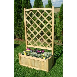 Ayden Wooden Planter Box By Freeport Park